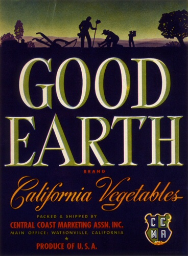 Product Image for Good Earth 18x24