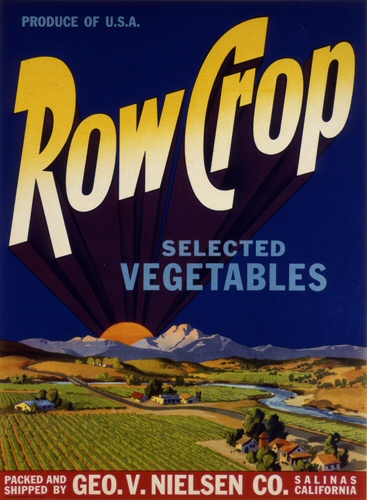 Product Image for Row Crop 18x24