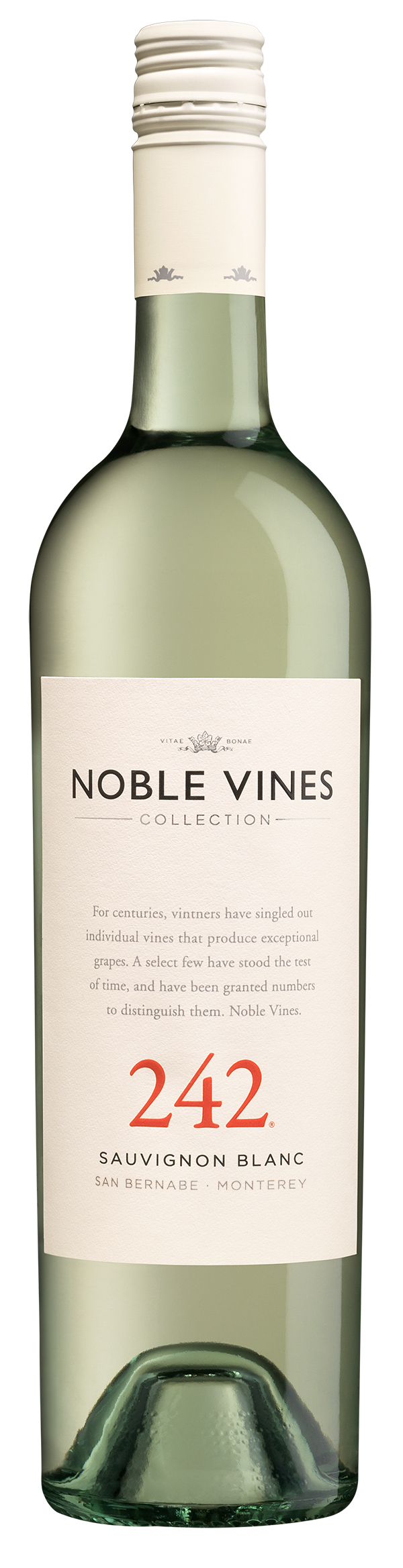Product Image for 2018 Noble Vines 242 Sauvignon Blanc